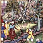 د بابر باغ