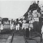 Camel loading