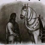-famous-horse-Laili